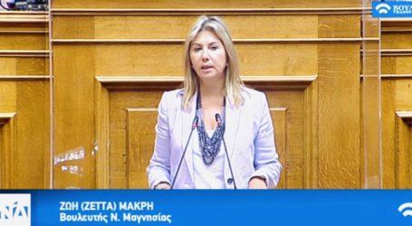 Ζέττα Μακρή: «Στην Βουλή, οι προβληματισμοί των εμπόρων για το click and collect (click away)»