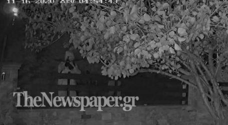 Βόλος: Καρέ – καρέ η προσπάθεια εκτέλεσης σκύλου με βαλλίστρα – Δείτε τις σοκαριστικές εικόνες