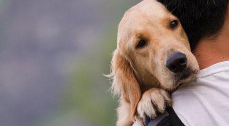 Η ΕΛ.ΑΣ αποκτά πρόσβαση για ταυτοποίηση των ιδιοκτητών ζώων συντροφιάς