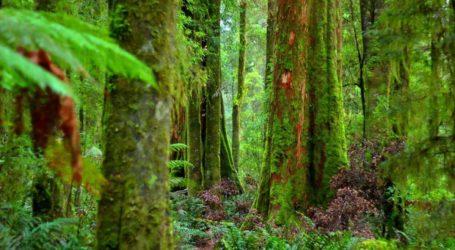 Ταξίδι στα ομορφότερα σημεία άγριας φύσης του πλανήτη