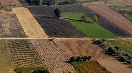 Απροσπέλαστα τα χωράφια από τη Λάρισα και πάνω για σπορά κριθαριού λόγω ανομβρίας