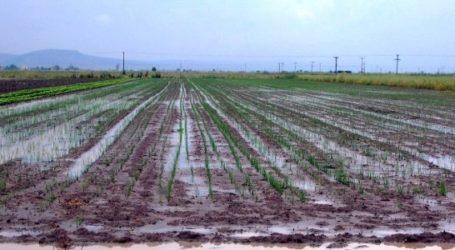 Χρ. Μπουκώρος: Έως 25 Νοεμβρίου θα αποζημιωθούν οι αγρότες του Αλμυρού για τις ζημιές του «Ιανού»