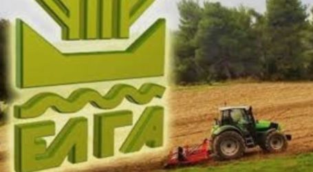 Δήμος Τεμπών: Κλιμάκιο του ΕΛΓΑ θα ελέγξει τις καλλιέργειες την Παρασκευή