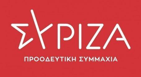 Επίσκεψη αντιπροσωπείας του ΣΥΡΙΖΑ στις δικαστικές φυλακές Ιωαννίνων
