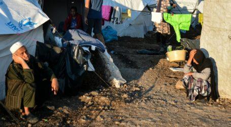Επιδρομή αρουραίων στο Καρά Τεπέ