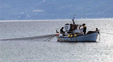 Βόλος: Τι αλλάζει από σήμερα στα μέτρα της αλιείας