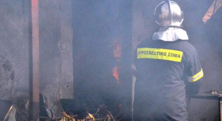 Φωτιά σε σπίτι στα Κάτω Λεχώνια