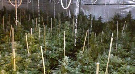 Εξαρθρώθηκε κύκλωμα διακίνησης ναρκωτικών στην Αττική