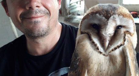 Λάρισα: Το νυκτόβιο αρπακτικό πτηνό «Τυτώ» είναι ο εξολοθρευτής των ποντικών – Μπορεί να φάει και 6.000 σε ένα χρόνο