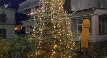 Στόλισε ο δήμος Τεμπών φιλοδοξώντας να δώσει μια χριστουγεννιάτικη ατμόσφαιρα στους πολίτες (φωτο)