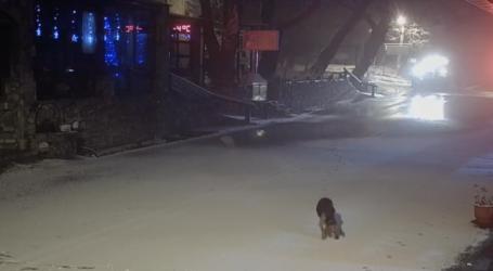 ΤΩΡΑ: Ξεκίνησε το πέρασμα της κακοκαιρίας στη Μαγνησία – Χιονίζει στο Πήλιο [εικόνες]