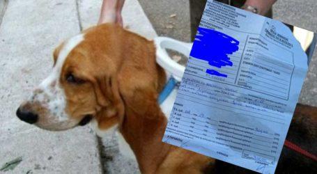 Βόλος: «Καμπάνα» 300 ευρώ γιατί δεν είχε τσιπάρει τον σκύλο του