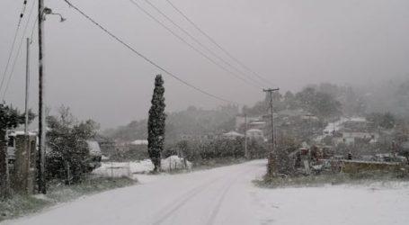 ΤΩΡΑ: «Στα λευκά» η Σκόπελος – Χιονίζει από το πρωί [εικόνες]