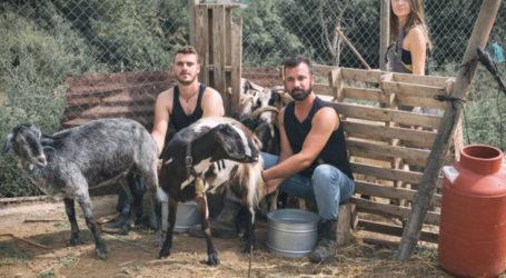 """Αυτός είναι ο αγρότης από τα Φάρσαλα που θα έχει ρόλο επιστάτη στο νέο ριάλιτι """"Φάρμα"""" του ΑΝΤ1 (video)"""