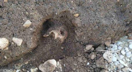 Θρίλερ με σκελετό στο νησάκι της Παλαιοσούδας στο Μαράθι