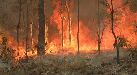 Πυρκαγιά απειλεί «ζωές και κατοικίες» στο Περθ