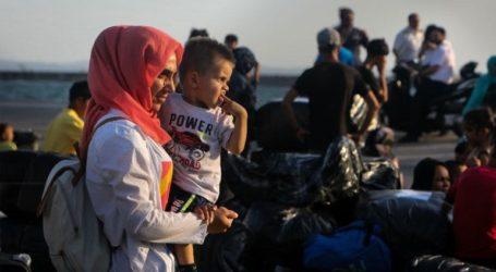 Παράνομοι διακινητές παράτησαν μετανάστες σε ελαιώνα και τους είπαν ότι έφτασαν στην Ιταλία