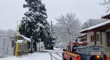 Χιόνισε στη Λαμία τα ξημερώματα του Σαββάτου
