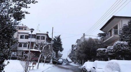 Αποκαθίστανται σταδιακά οι βλάβες ηλεκτροδότησης στην Αν. Θεσσαλονίκη