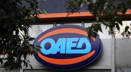 ΟΑΕΔ: Τα νέα προγράμματα που έρχονται, κανένα πρόγραμμα κοινωφελούς εργασίας για το 2021