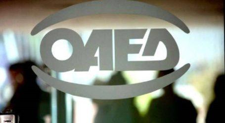 ΟΑΕΔ: Ξεκινούν οι αιτήσεις για το νέο πρόγραμμα για 7.000 ανέργους άνω 30 ετών και μισθό έως 710 ευρώ