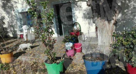 Αγροτικές φυλακές Κασσαβέτειας: Εδώ «έμενε» ο Κουφοντίνας – Δείτε φωτογραφίες