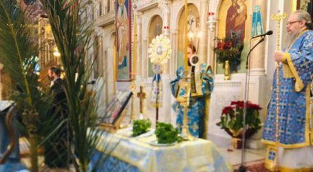 Με πιστούς τα Θεοφάνεια στις εκκλησίες της Λάρισας – Δείτε φωτογραφίες από την λειτουργία στον Μητροπολιτικό Ναό του Αγ. Αχιλλίου (φωτο)