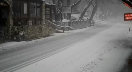 Ελαφριά χιονόπτωση στα Χάνια Πηλίου [εικόνα]