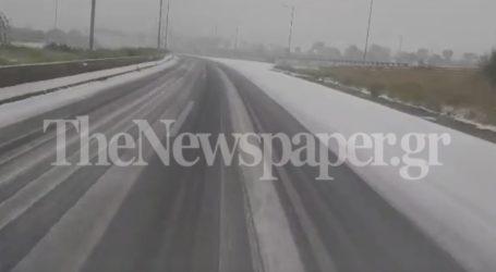 Λευκό πέπλο στην Περιφερειακή οδό του Βόλου [βίντεο]