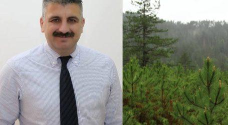 Μιτζικός: Πρέπει να κοπούν αρκετά δέντρα για να μην έχουμε προβλήματα σε Πήλιο και Σποράδες