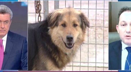 Σ. Πέτσας: Αποτροπιασμός για τον πνιγμένο σκύλο στη Σκιάθο
