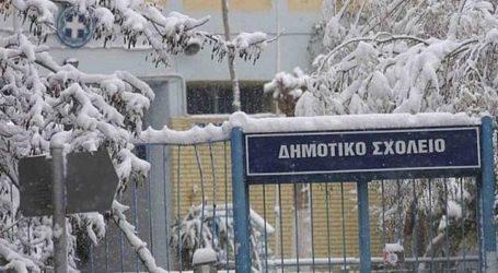 Κλειστά αύριο τα σχολεία στον Δήμο Βόλου με απόφαση Μπέου