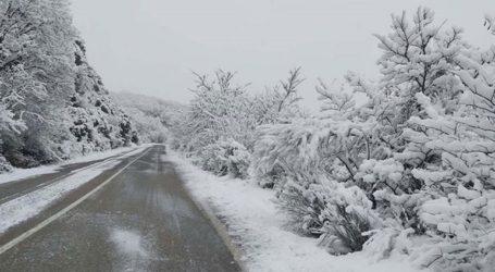Έως -11,4 βαθμούς Κελσίου η ελάχιστη θερμοκρασία, σήμερα το πρωί, στη Φλώρινα