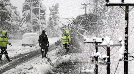 «Μήδεια»: Το μεγάλο βάρος του χιονιού διέλυσε τα δέντρα