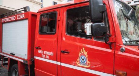 Καλαμάτα: Φωτιά στην περιοχή Νέδουσα