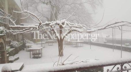 Μαγνησία: Πυκνή χιονόπτωση και ομίχλη στο Βένετο – Εντυπωσιακές εικόνες