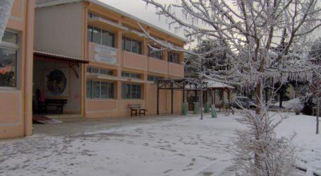Κλειστά σχολεία σε όλη την Π.Ε. Λάρισας σήμερα Τρίτη – Σε ποιους δήμους είναι ανοιχτοί οι παιδικοί σταθμοί