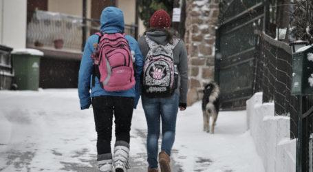 Κλειστά τα σχολεία σε Πήλιο και Δ. Ρήγα Φεραίου