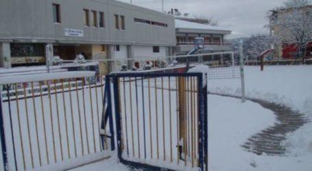 Κλειστά θα παραμείνουν όλα τα σχολεία Τρίτη και Τετάρτη στον δήμο Τυρνάβου λόγω κακοκαιρίας