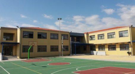 Δήμος Ελασσόνας: Πως θα λειτουργήσουν τα σχολεία αύριο Πέμπτη