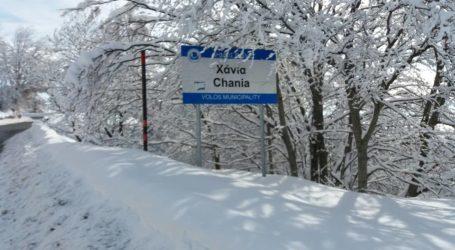 Πήλιο: «Καλώς ήρθες άνοιξη» με 10 πόντους χιόνι [βίντεο]