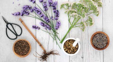 Τρία βότανα που νικούν το στρες και βελτιώνουν τη διάθεση