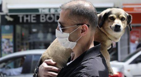 Η «βρετανική» παραλλαγή του κορωνοϊού βρέθηκε για πρώτη φορά σε σκύλους και γάτες σε Ευρώπη και ΗΠΑ