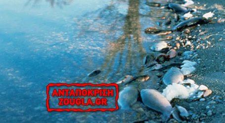 Μολύνσεις στο νερό, από μικρο-ρύπους, παραδέχεται η Κομισιόν!
