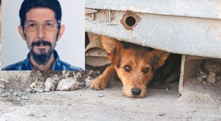 Λάρισα: Μαρτυρίες για περίεργη συμπεριφορά ζώων πριν χτυπήσει ο εγκέλαδος – Ο Χουλιάρας για το αν στέλνουν προμήνυμα για σεισμό