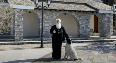 O σκύλος που αγάπησε τον Μητροπολίτη Ιγνάτιο