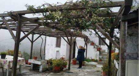 Έγκλημα στη Μακρινίτσα: Οι καθυστερήσεις έφεραν προκαταρκτική έρευνα από τον εισαγγελέα