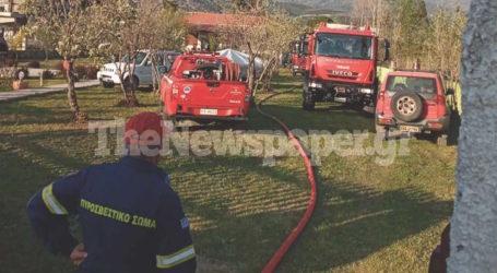 Φωτιά σε οικόπεδο στο Σουτραλί Αγριάς [εικόνες]