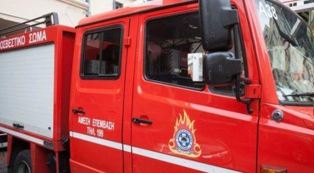 Σε εξέλιξη φωτιά στην περιοχή Άγιος Ανδρέας του Δήμου Ευρώτα
