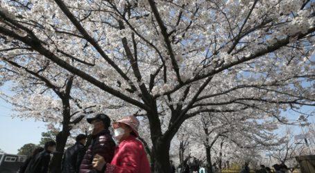 Αναμένονται νέα περιοριστικά μέτρα στη Νότια Κορέα